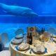 Pesce sostenibile 600x600