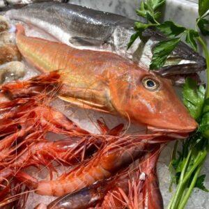 Evviva il pesce